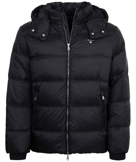 The Alta Down Jacket thumbnail